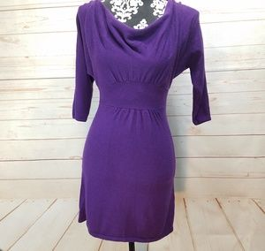 Express Wool Blend Cowl Neck Dress Xs